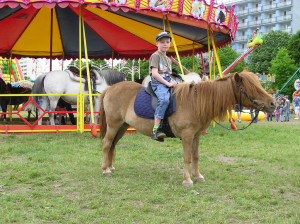 Projížďka na poníkovi